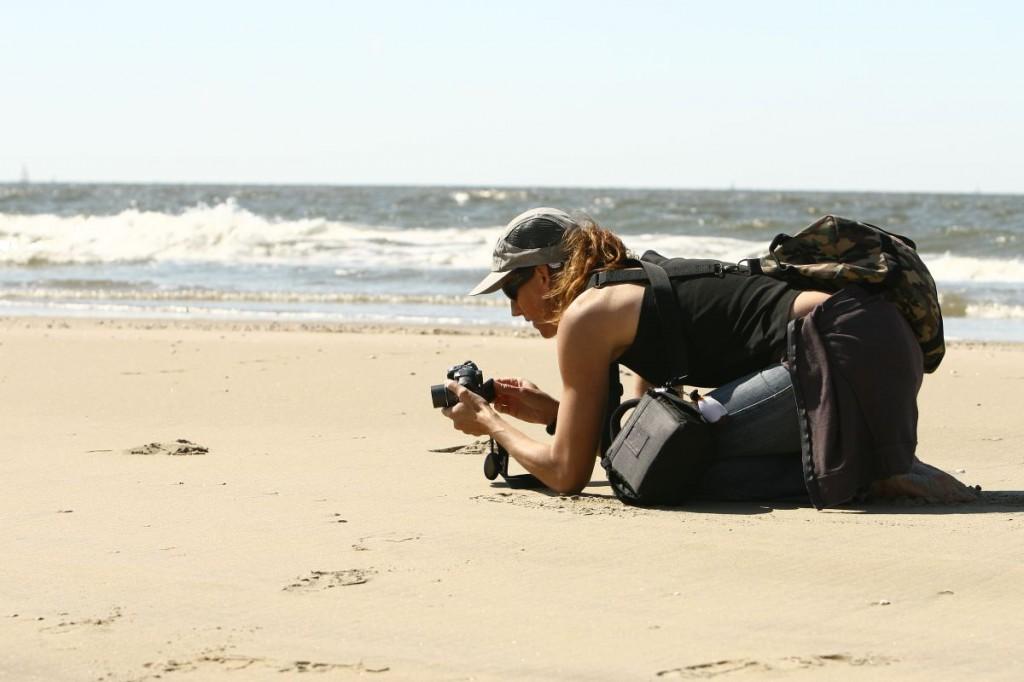 makrofotografia